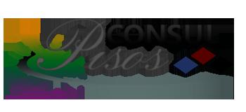 Consul Pisos